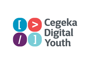 Înscriere Cegeka Digital Youth