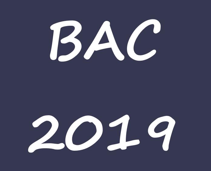 Bacalaureat 2019 – Probele Competențe Lingvistice și Digitale