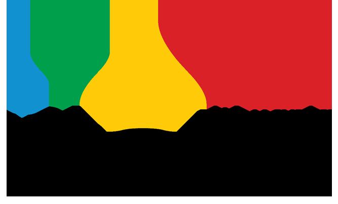 Tudor Mocioi. Medaliat cu aur la Olimpiada Internationala de Fizica